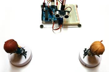 Experiment of Arduino Rader.JPG